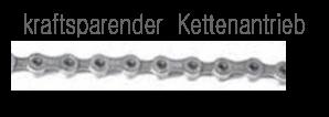 Kette /  Riemen / Ausführung: Kraftsparender Kettenantrieb (auf Wunsch möglich)